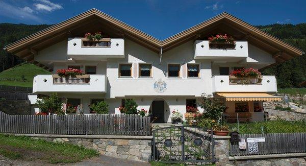 Foto estiva di presentazione XL-Appartements Steinhaus - Appartamenti 4 soli