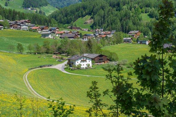 La posizione Appartamenti in agriturismo Obergruberhof San Pietro (Valle Aurina)