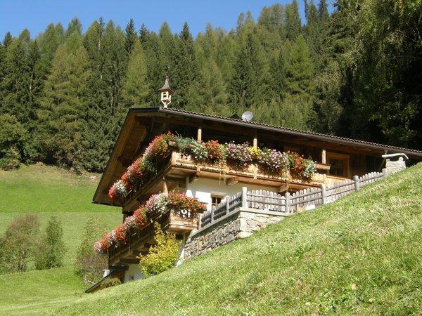 Foto estiva di presentazione Grossgasteigerhof - Appartamenti in agriturismo 3 fiori