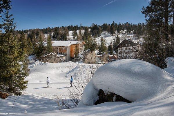 Foto esterno in inverno Elisir