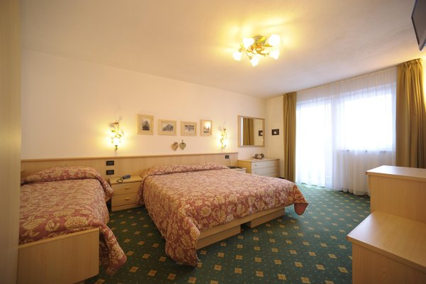 Photo of the room Hotel Albolina