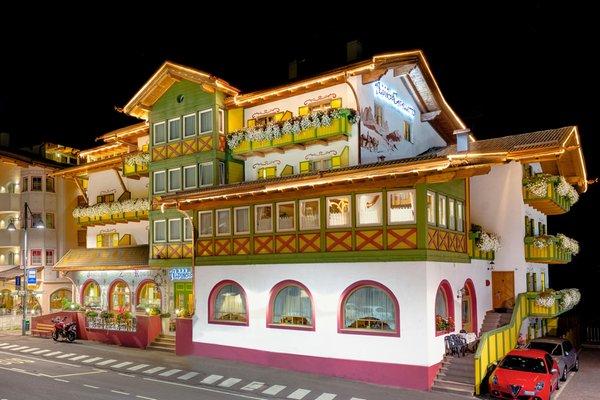 Foto estiva di presentazione Alpino al Cavalletto - Albergo 3 stelle