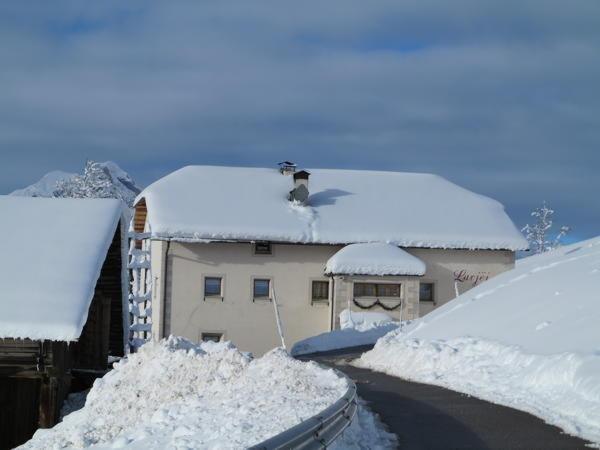 Foto invernale di presentazione Larjëi - Appartamenti 2 fiori