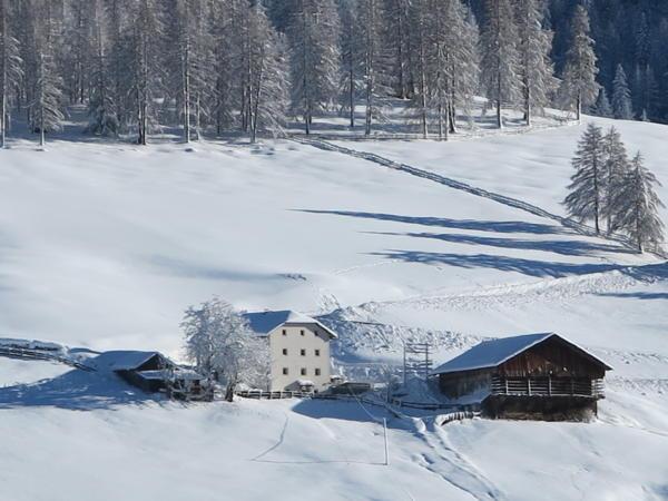 Foto Außenansicht im Winter Larjëi