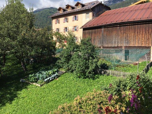 Foto vom Garten Vigo di Fassa