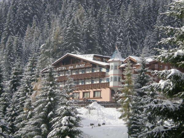 Winter presentation photo Des Alpes - Hotel 3 stars