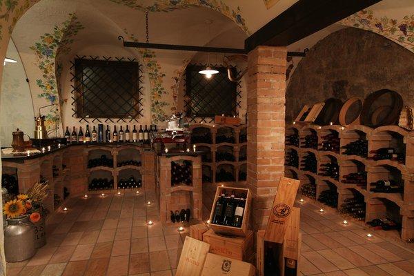 Wine cellar Soraga Malder