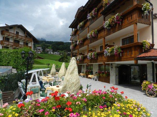 Foto esterno in estate Stella Alpina