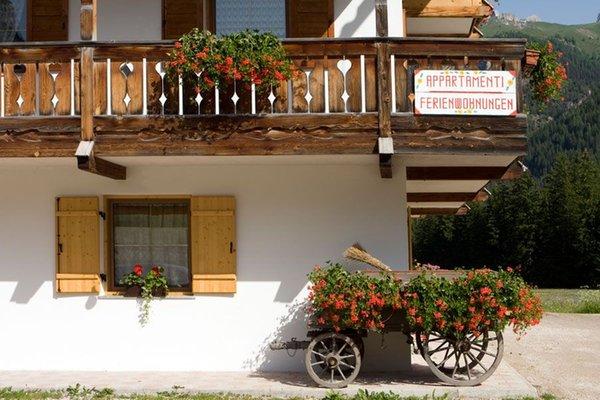 Foto esterno in estate Cèsa Ciasates