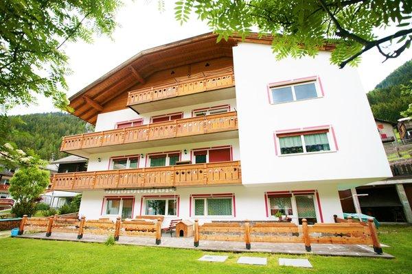 Foto estiva di presentazione Cèsa Riz - Appartamento 4 genziane