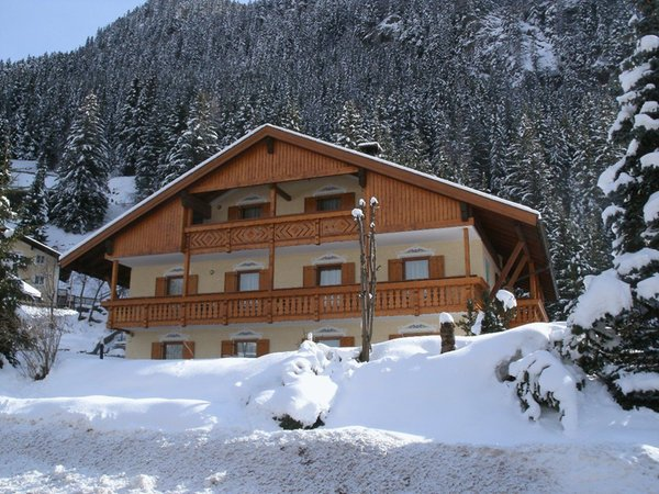 Foto invernale di presentazione Cèsa Col de Pin - Appartamenti 3 genziane