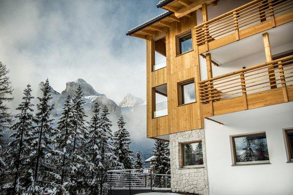 Foto esterno in inverno Larix