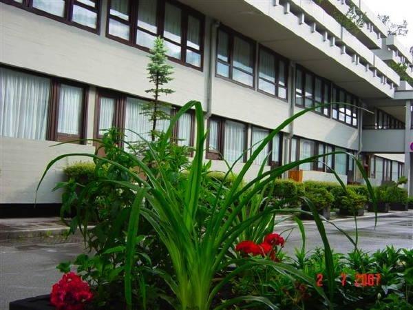 Foto estiva di presentazione Bertolini Niki - Appartamenti 3 genziane