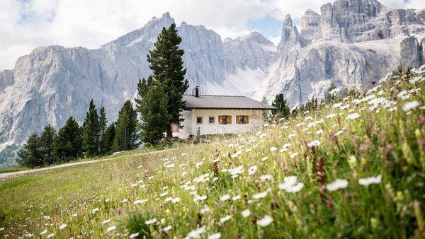 Foto esterno in estate Ütia Forcelles