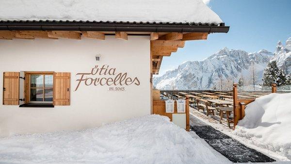 Foto esterno in inverno Ütia Forcelles