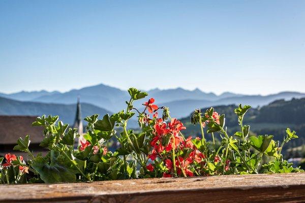 Foto del balcone Wiedenhofer