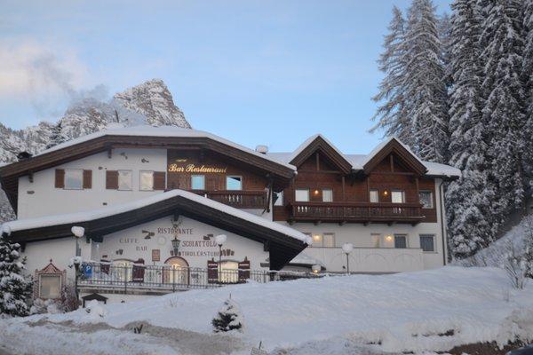 Foto Außenansicht im Winter Scoiattolo