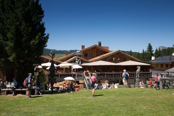 Sommer Präsentationsbild Berghütte Tirler