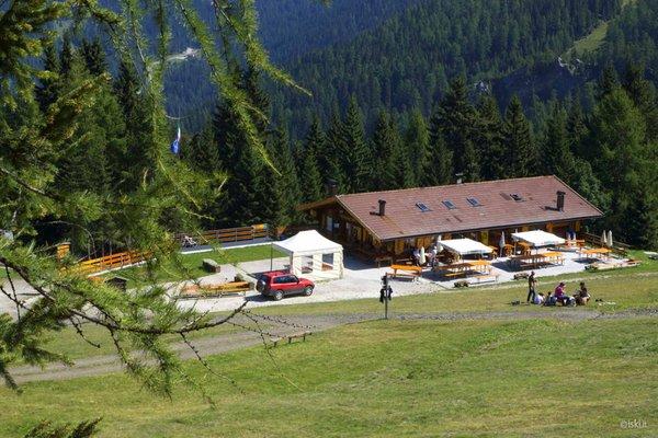 Summer presentation photo Mountain hut Fertazza