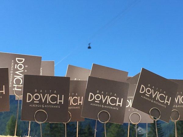 Logo Dovich