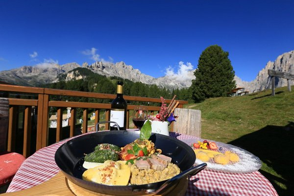 Ricette e proposte gourmet Checco
