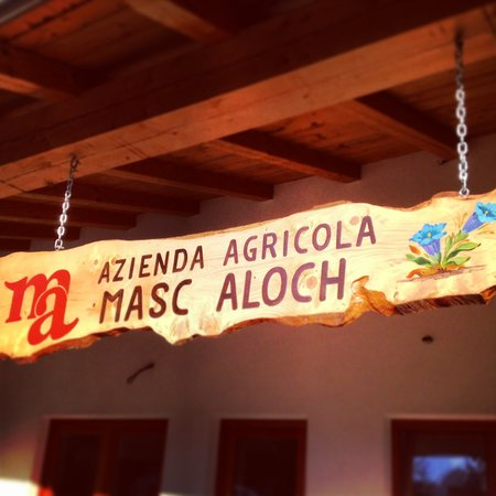 Foto di presentazione Aloch - Malga