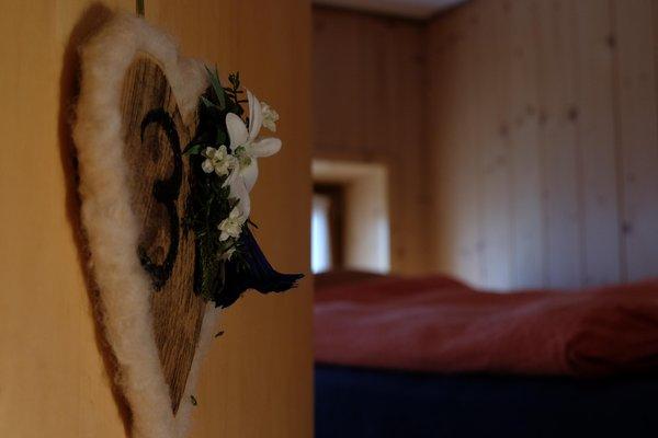 Foto di alcuni dettagli Roda di Vaèl - Rotwandhütte