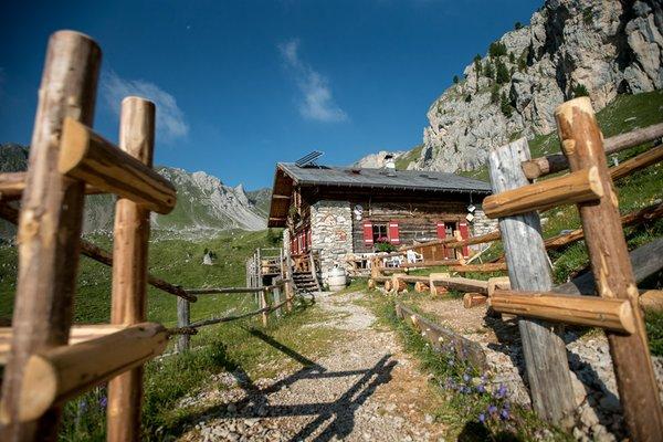 Photo exteriors in summer Vallaccia