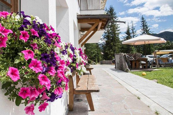 Foto esterno Apartments Ciasa Eghes