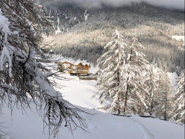Photo exteriors in winter Florian