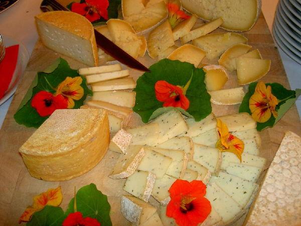 Ricette e proposte gourmet Steinhauswirt
