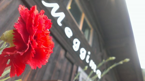 Foto di presentazione Meggima al lago - Ristorante Pizzeria