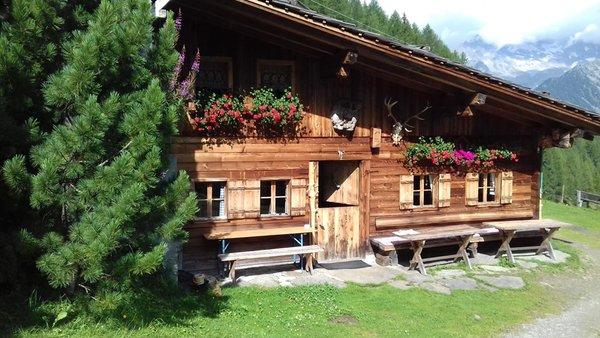 Foto esterno in estate Hochfeldalm