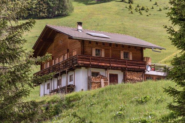 Foto estiva di presentazione Malga Oberhabererhütte auf Stumpfalm