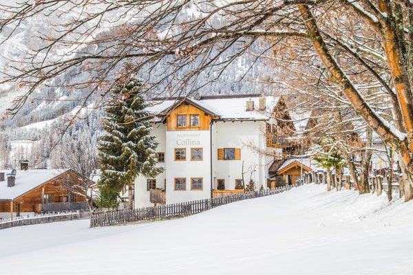 Photo exteriors in winter Collina