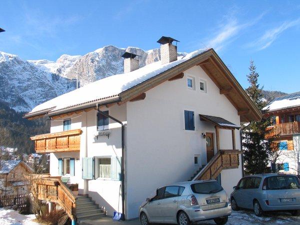 Foto invernale di presentazione Frenademetz - Appartamento 2 stelle