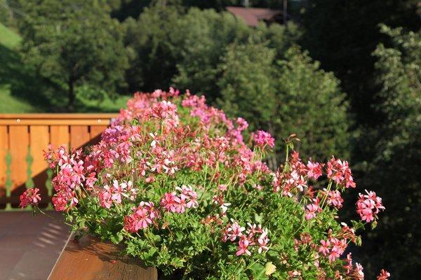 Foto del balcone Villa Otto