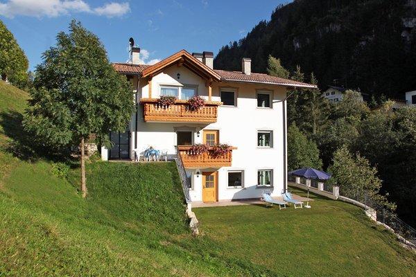 Foto Außenansicht im Sommer Villa Otto