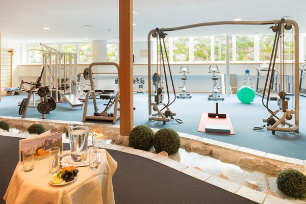 Foto della zona fitness Centro benessere Bad Moos