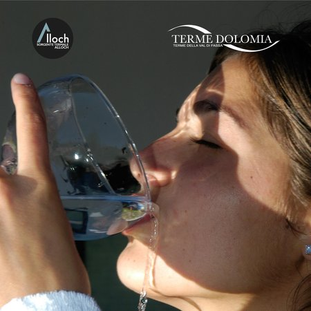 Foto del wellness Wellness e Beauty Farm Terme Dolomia