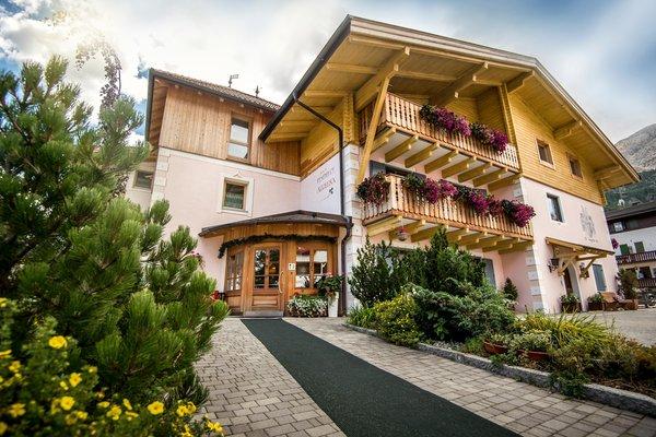 Foto estiva di presentazione Angelika - Residence 3 stelle