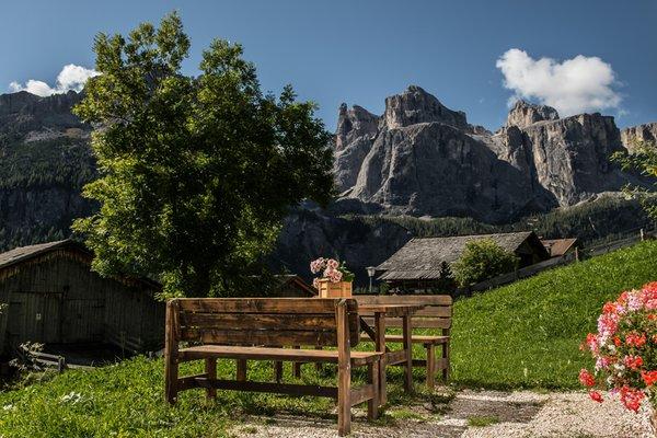 Photo of the garden Colfosco