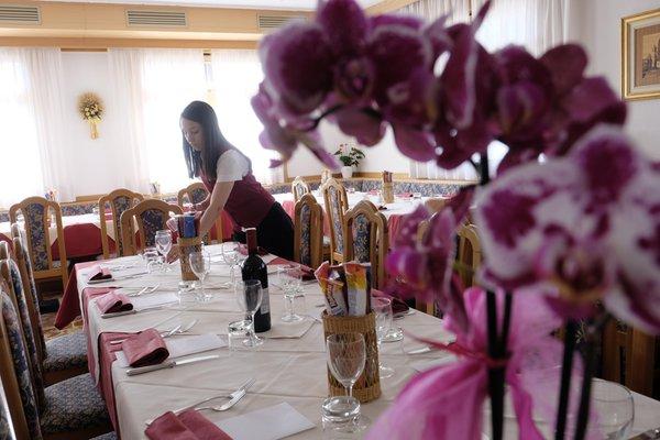 The restaurant Bellamonte Antico