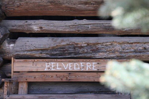 Foto di alcuni dettagli Belvedere