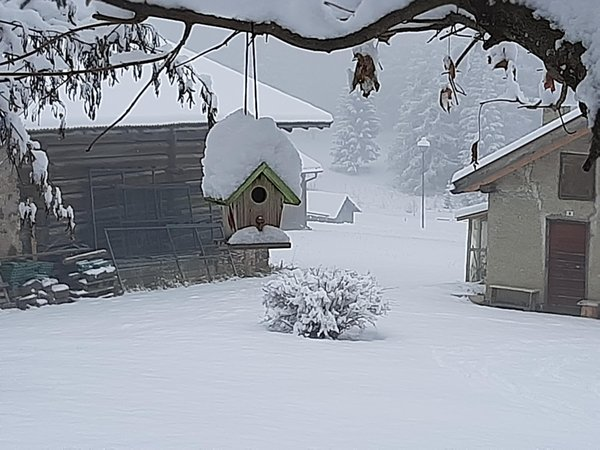 Foto Außenansicht im Winter Belvedere