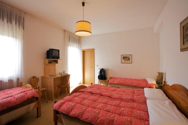 Photo of the room Hotel Bellaria