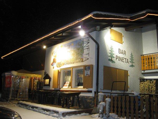 Foto esterno in inverno Pineta