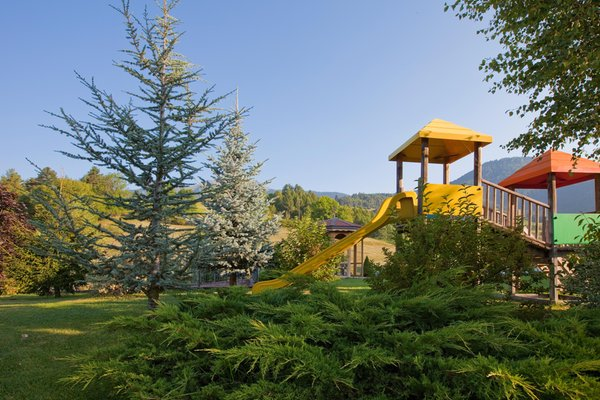 Photo of the garden Cavalese
