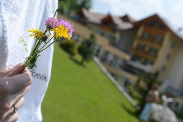 Foto einiger Details  Rio Stava Family Resort & Spa