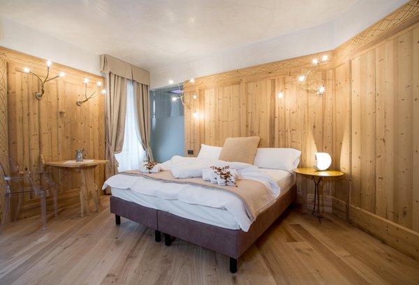 Photo of the room Hotel Orso Grigio